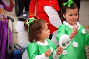 carnaval el casar26